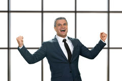Mature businessman laughing happily. Royalty Free Stock Photography