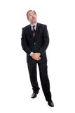 Mature businessman portrait Stock Photography
