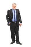 Mature businessman posing Royalty Free Stock Image