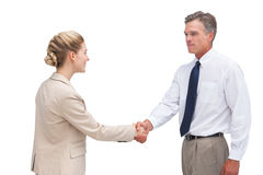 Mature businessman shaking hands with his coworker Stock Photos