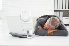 Mature businessman sleeping on desk Royalty Free Stock Image