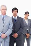 Mature businessman standing with his employees Royalty Free Stock Photography