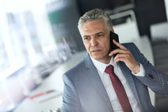 Mature businessman talking on mobile phone in conference room Royalty Free Stock Photography