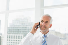 Mature businessman using mobile phone in office Stock Images