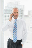 Mature businessman using mobile phone in office Royalty Free Stock Photo