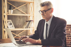 Mature businessman working Royalty Free Stock Image