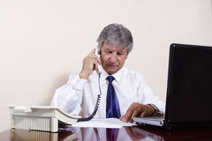 Mature businessman working with laptop in his office Stock Image