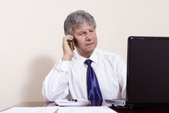 Mature businessman working with laptop in his office Stock Photos