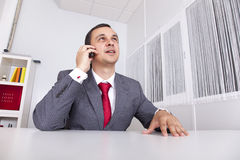 Mature businessman working at the office Royalty Free Stock Image