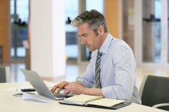 Mature businessman working at office Royalty Free Stock Photos