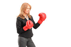 A mature businesswoman with red boxing gloves ready to fight Royalty Free Stock Photos