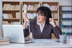 The mature businesswoman working in the office Royalty Free Stock Images