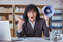 The mature businesswoman working in the office Royalty Free Stock Photos