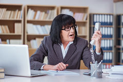 The mature businesswoman working in the office Stock Photo