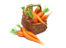 Mature carrots in a wicker basket on a white background close-up Stock Photography