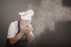 Mature chef sneezing in a pile of flour. Taken with copy space stock photography