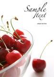 Mature cherries Stock Photo