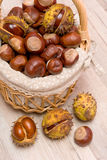 Mature chestnuts in the basket close up Stock Images