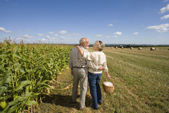 Mature couple arm in arm with basket by corn field, rear view Royalty Free Stock Photo