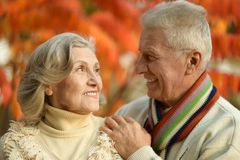 Mature couple in the autumn park Stock Images