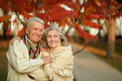 Mature couple in the autumn park Stock Photography
