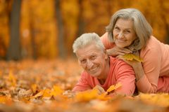 Mature couple in the autumn park Royalty Free Stock Image