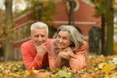 Mature couple in the autumn park Stock Photos