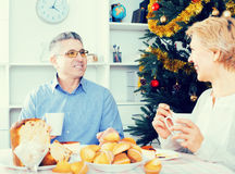 Mature couple celebrate Christmas. Husband and wife joyfully celebrate Christmas holidays festive cakes in his home royalty free stock photography