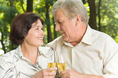 Mature couple celebrating Royalty Free Stock Image