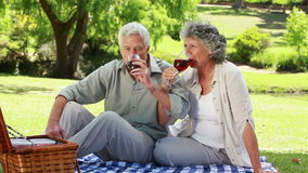 Mature couple clinking their glasses of red wine. In a park stock footage