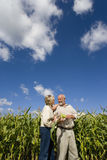Mature couple by corn field, smiling at each other, low angle view stock image