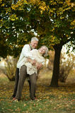 Mature couple dancing in park Royalty Free Stock Photography