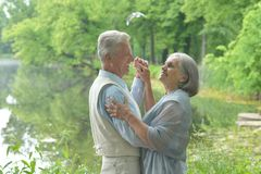 Mature couple  dancing in summer park Stock Image