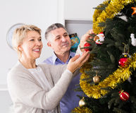 Mature couple decorate fir-tree for holidays of Christmas and Ne. W Year at home stock image