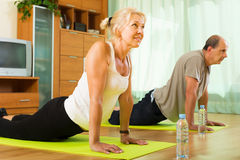 Mature couple doing exercises Royalty Free Stock Photo