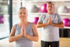 Mature couple doing fitness exercises Stock Image