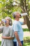 Mature couple drinking water at park Royalty Free Stock Image