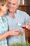 Mature couple drinking wine royalty free stock image
