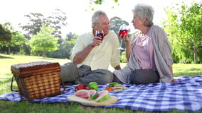 Mature couple drinking wines while at a picnic. In a park stock video footage