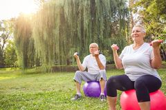 Mature couple exercise together on fitness ball in park stock photo