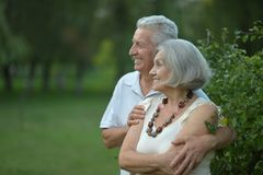 Mature couple faces. Portrait of  mature couple faces in summer park Royalty Free Stock Image