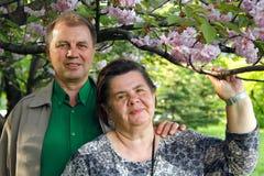 Mature couple happy hug in spring garden. Mature couple cheerful hug in spring garden Stock Photography