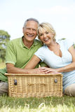 Mature couple having picnic in countryside Royalty Free Stock Images