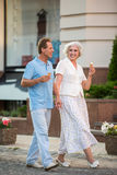 Mature couple is holding hands. Royalty Free Stock Image