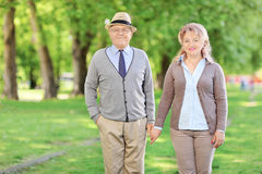 Mature couple holding hands and posing in a park Stock Photos