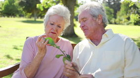 Mature couple holding a rose Royalty Free Stock Photo