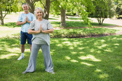 Mature couple with joined hands at park Stock Photo