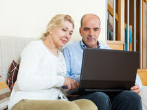 Mature couple  with laptop Stock Photography