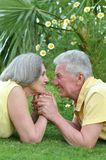 Mature couple laying on grass Stock Image