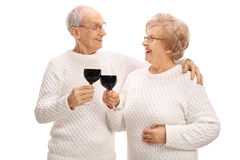 Mature couple making a toast with wine Stock Image